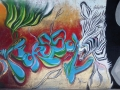 fresque-poasson-zebre-gros-plan.jpg
